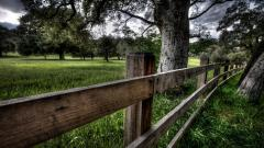 Wood Fence Pictures 31770