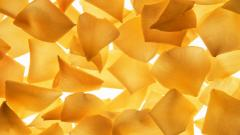 Yellow Flower Petals 25883
