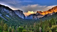 Yosemite Pictures 31468