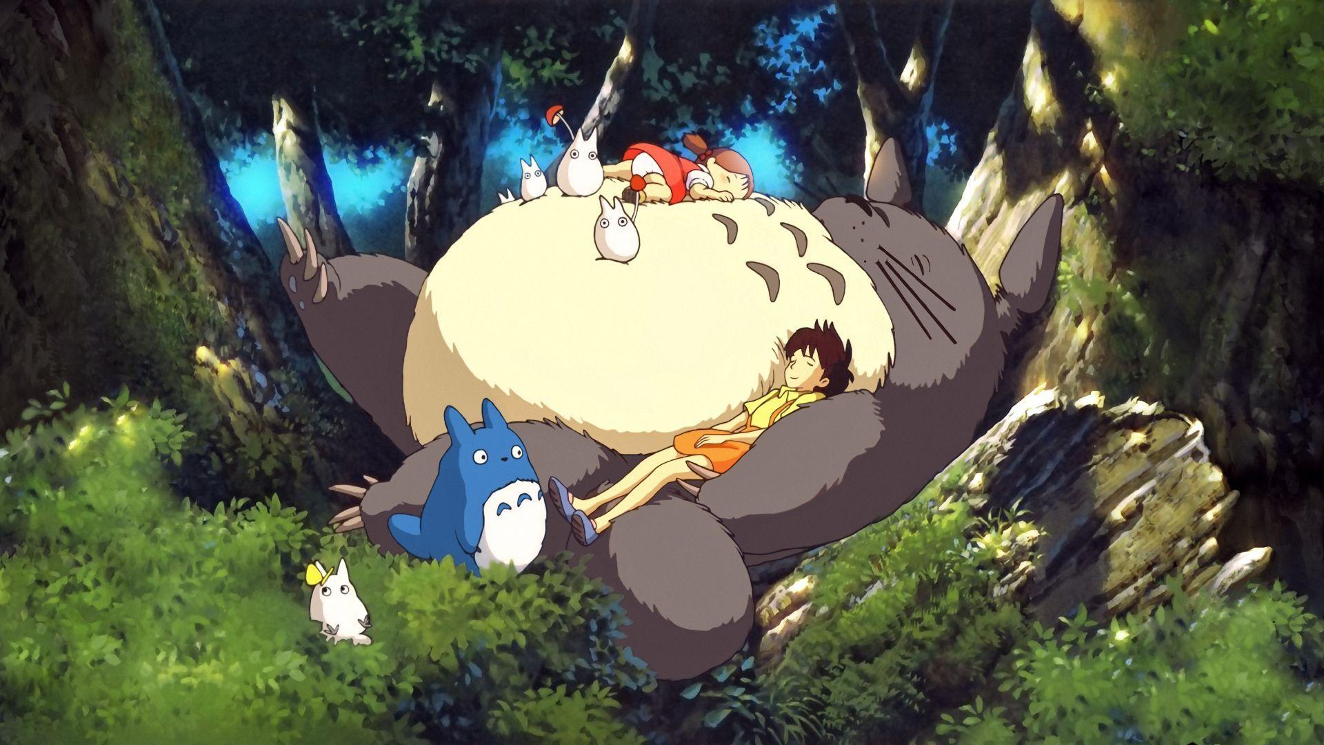Totoro Wallpaper 27975 1920x1080 px HDWallSourcecom