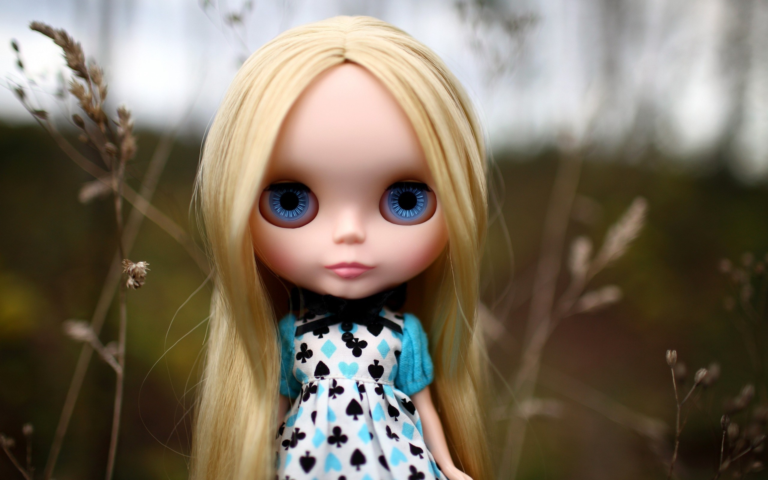 toy doll backgrounds 42430