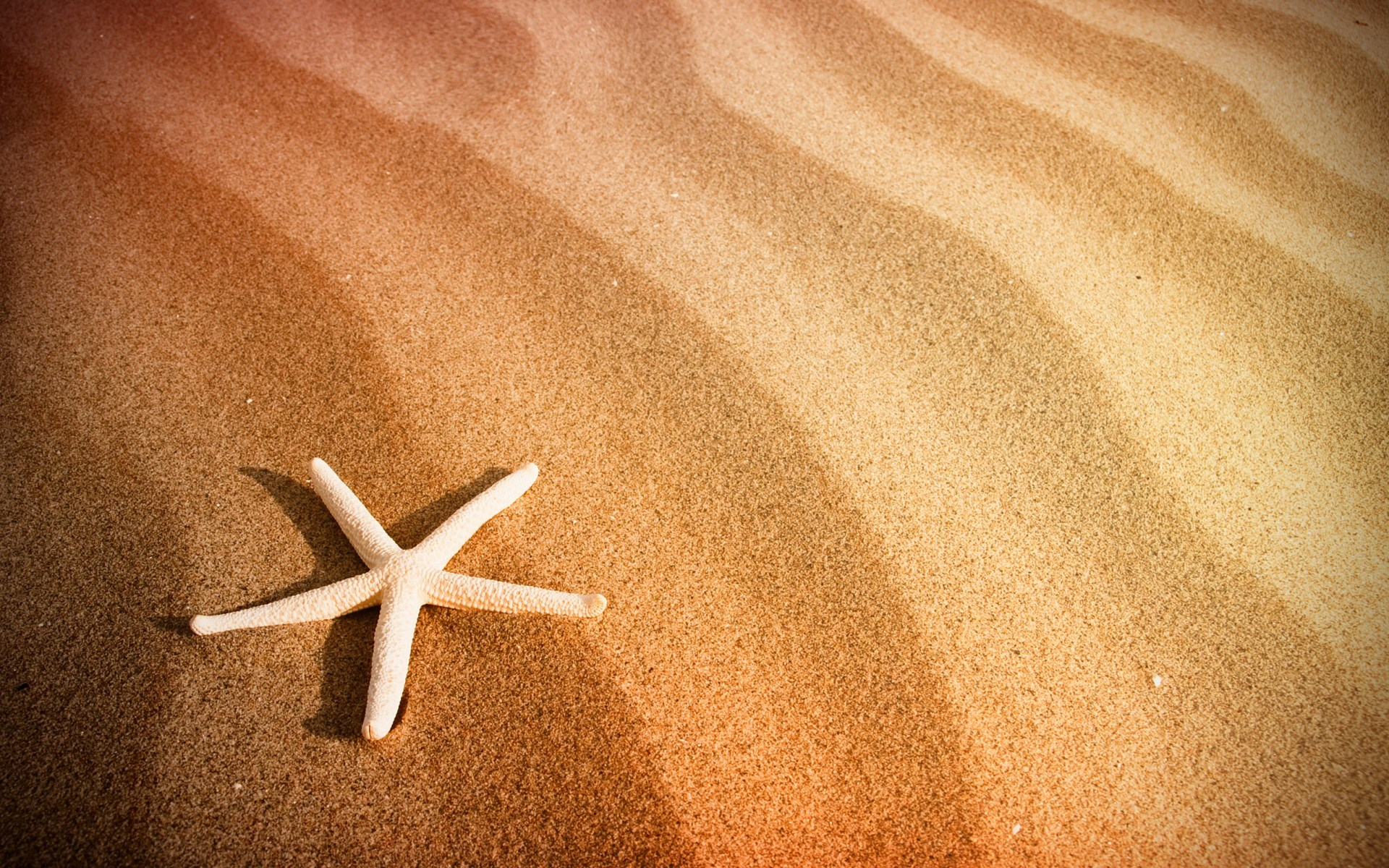 beautiful beach sand wallpaper 22205