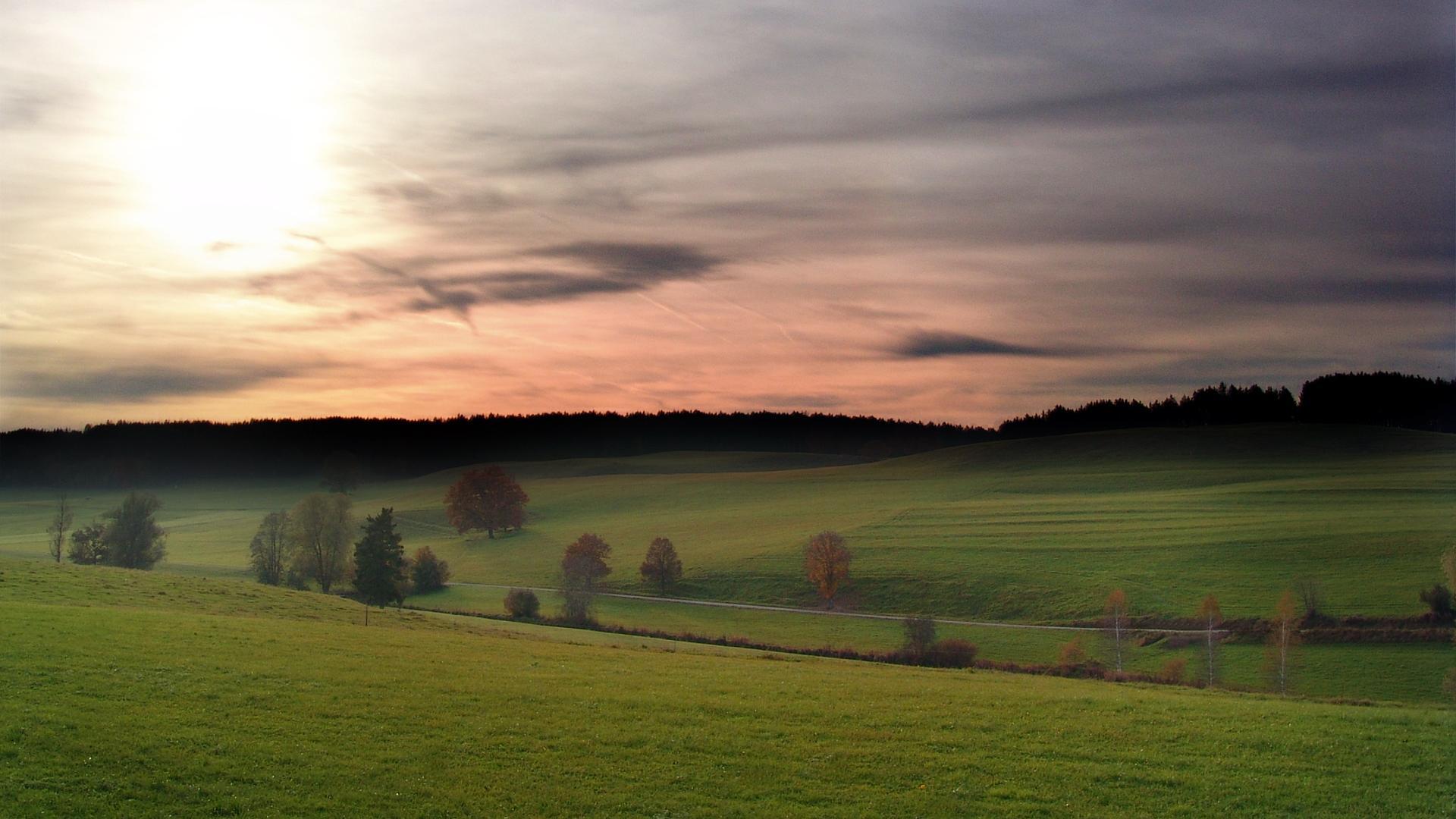 beautiful grasslands wallpaper 39645