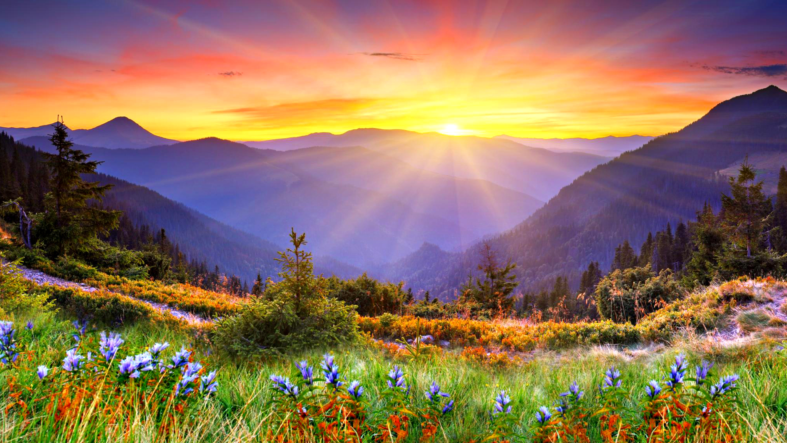 Beautiful Sunrise Wallpaper 34171 2560x1440 Px