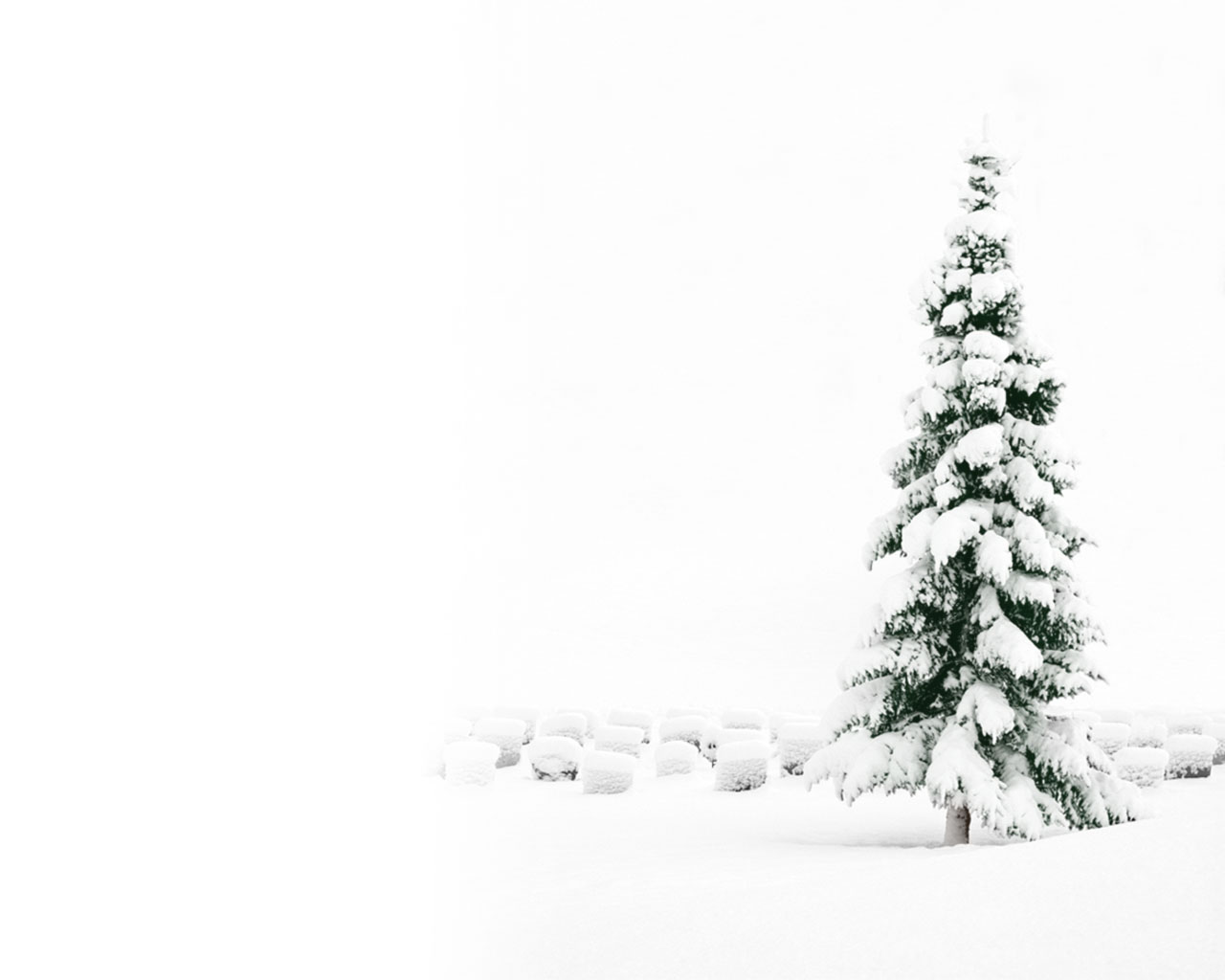 christmas tree wallpapers 22874 - Snow Christmas Tree
