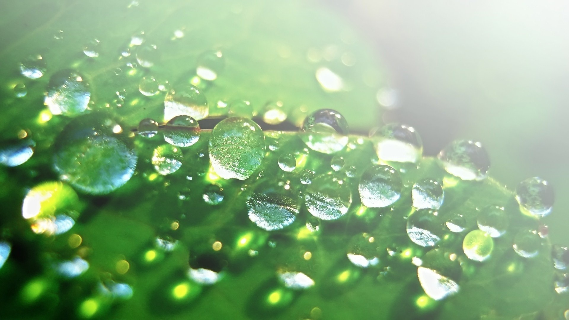 cool water drop wallpaper 26130 1920x1080 px ~ hdwallsource
