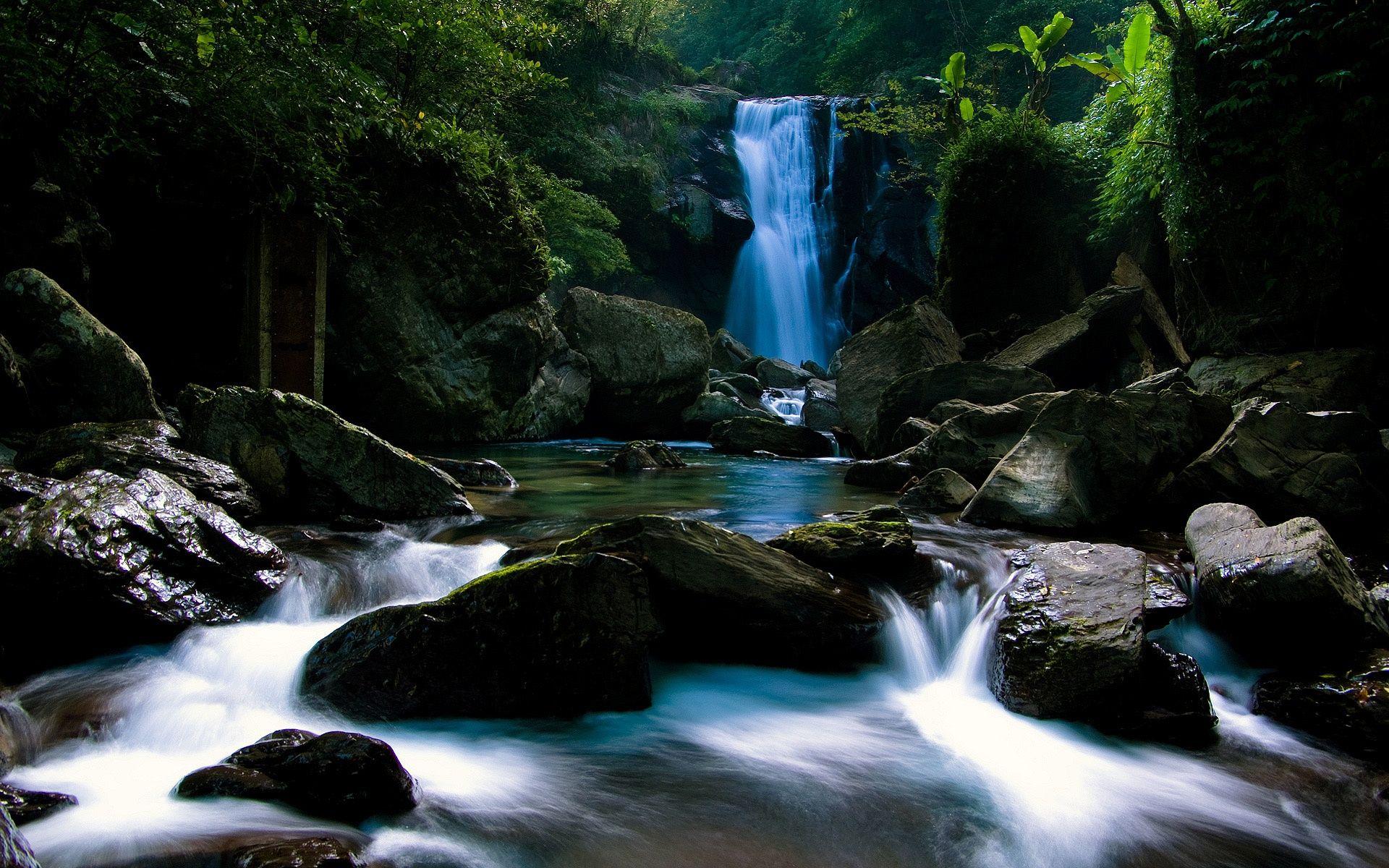forest waterfall wallpaper 34061