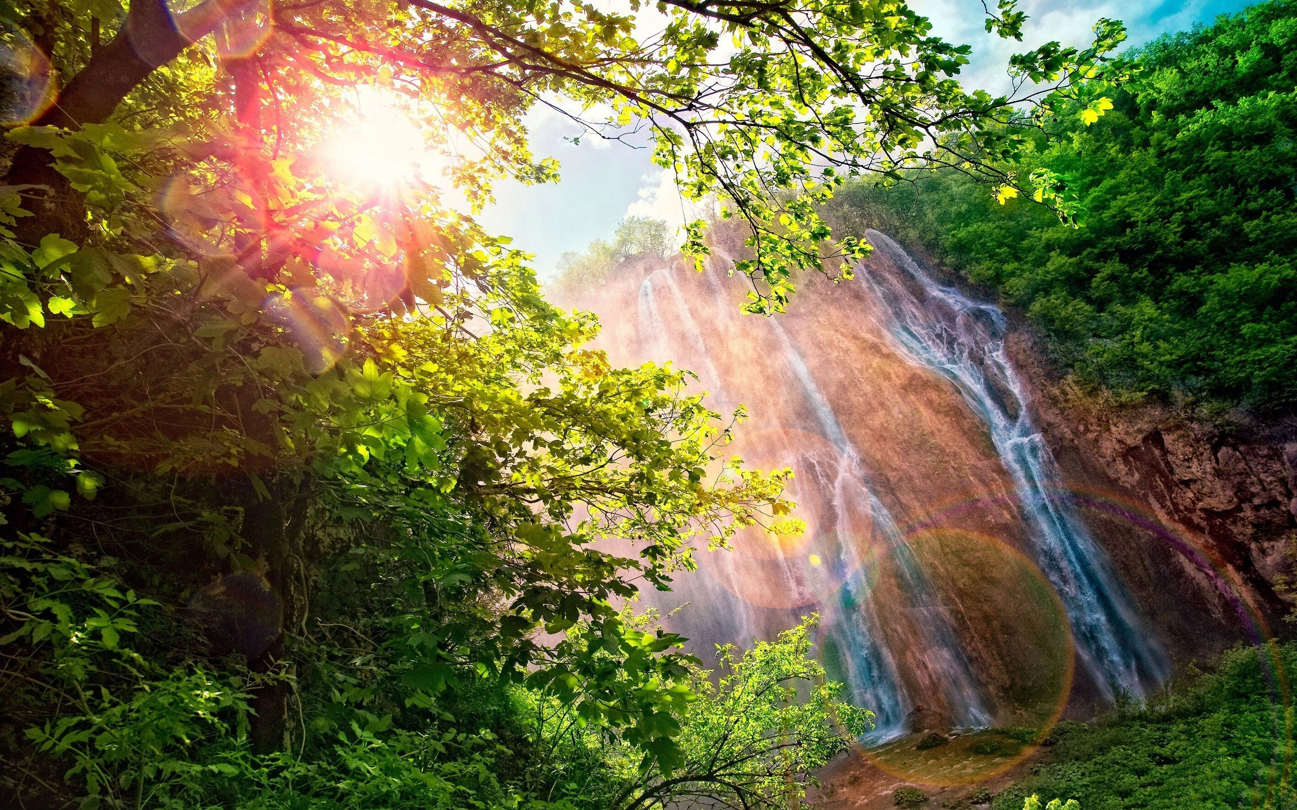 Forest Waterfall Wallpaper HD 34072