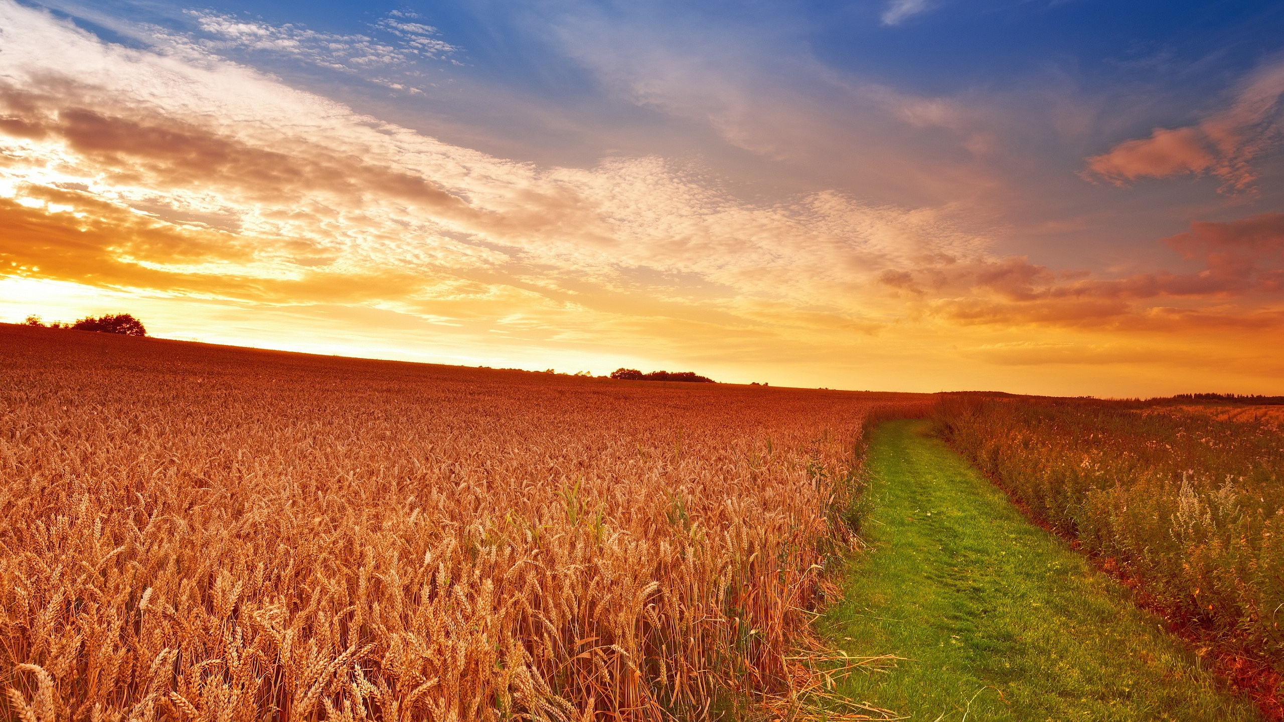 free countryside wallpaper 35896