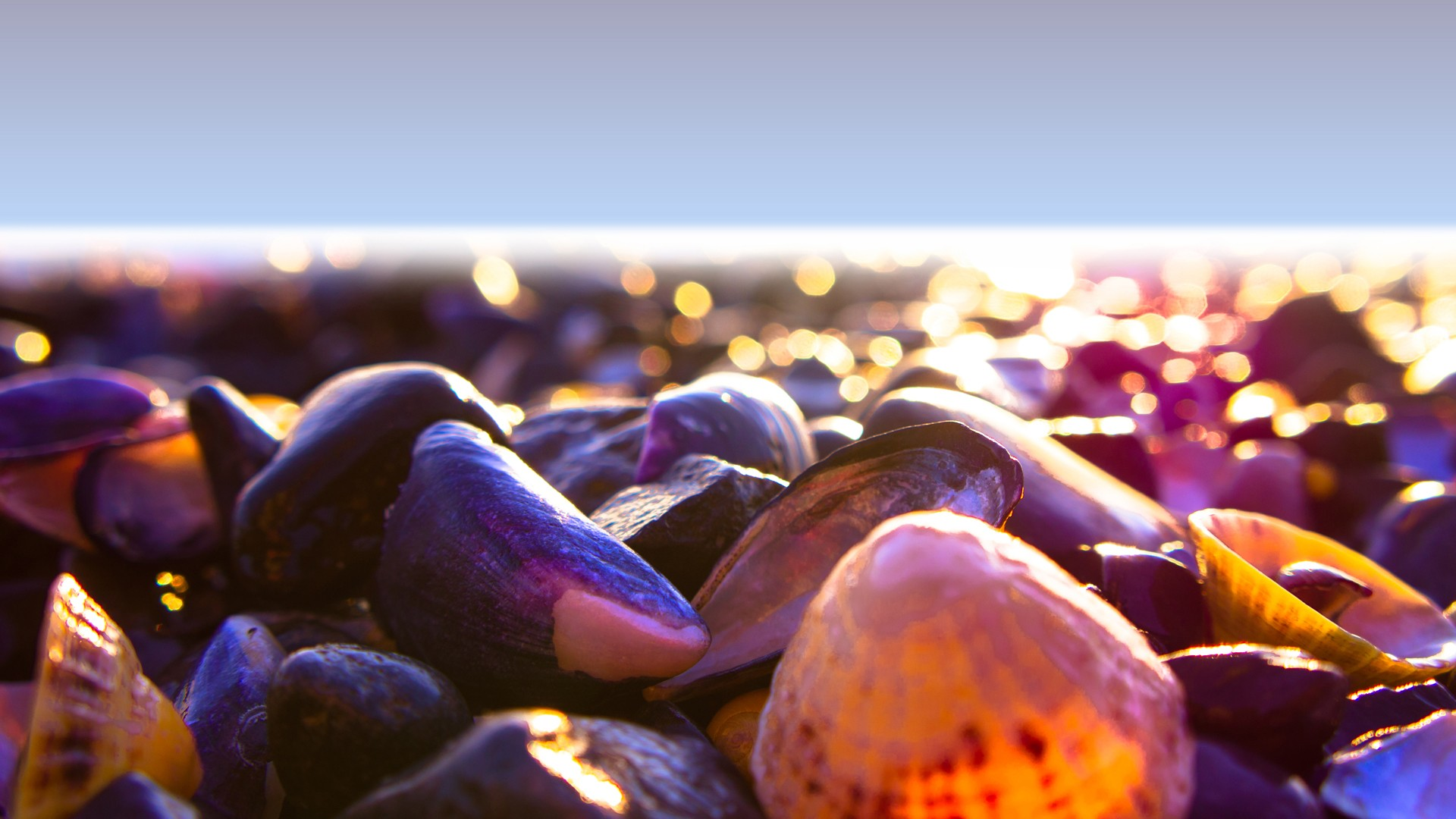 free ocean bokeh wallpaper 35925