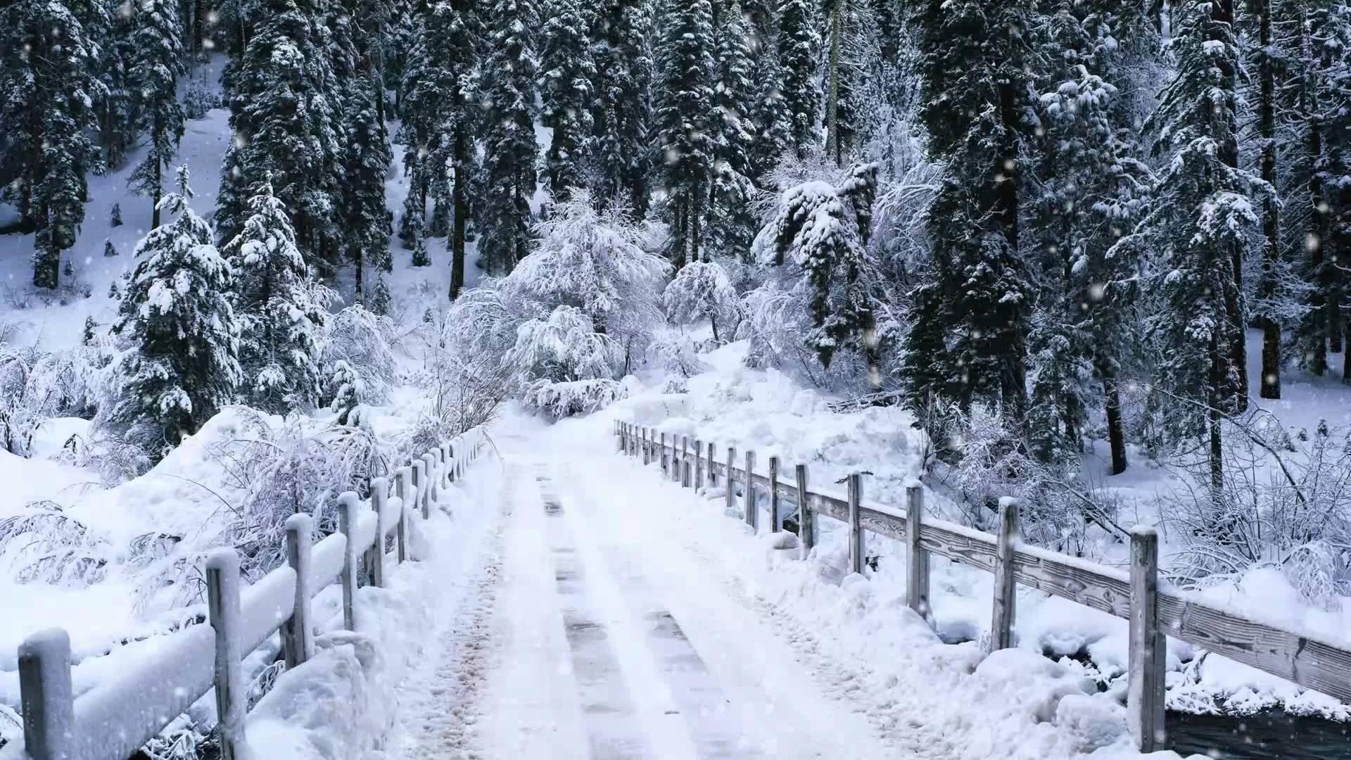 free snowflakes falling wallpaper 37170