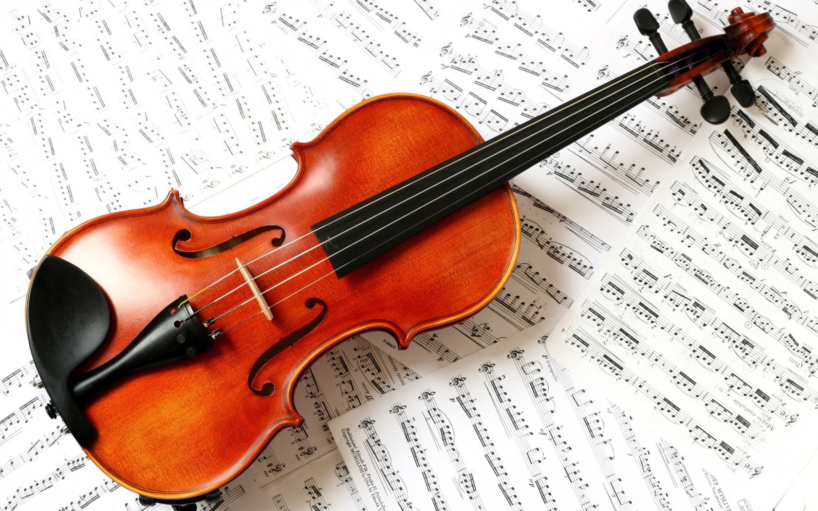 free violin wallpaper 34036