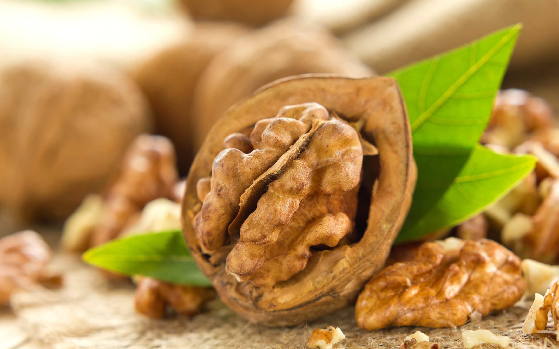 free walnut wallpaper 21980