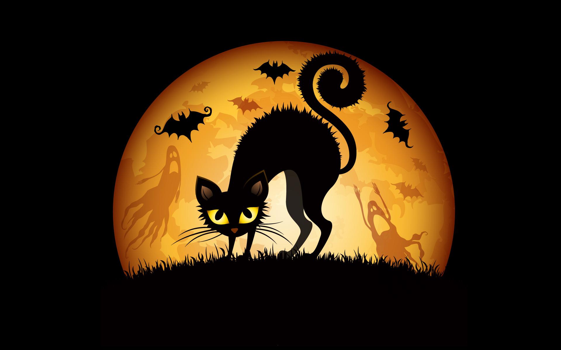 halloween wallpaper 15762 - Pictures Of Halloween