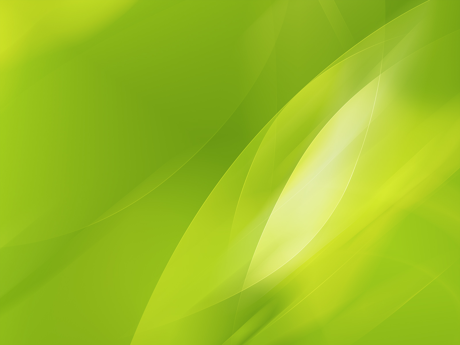 Lime Green Wallpaper 21079 1600x1200 px ~ HDWallSource.com