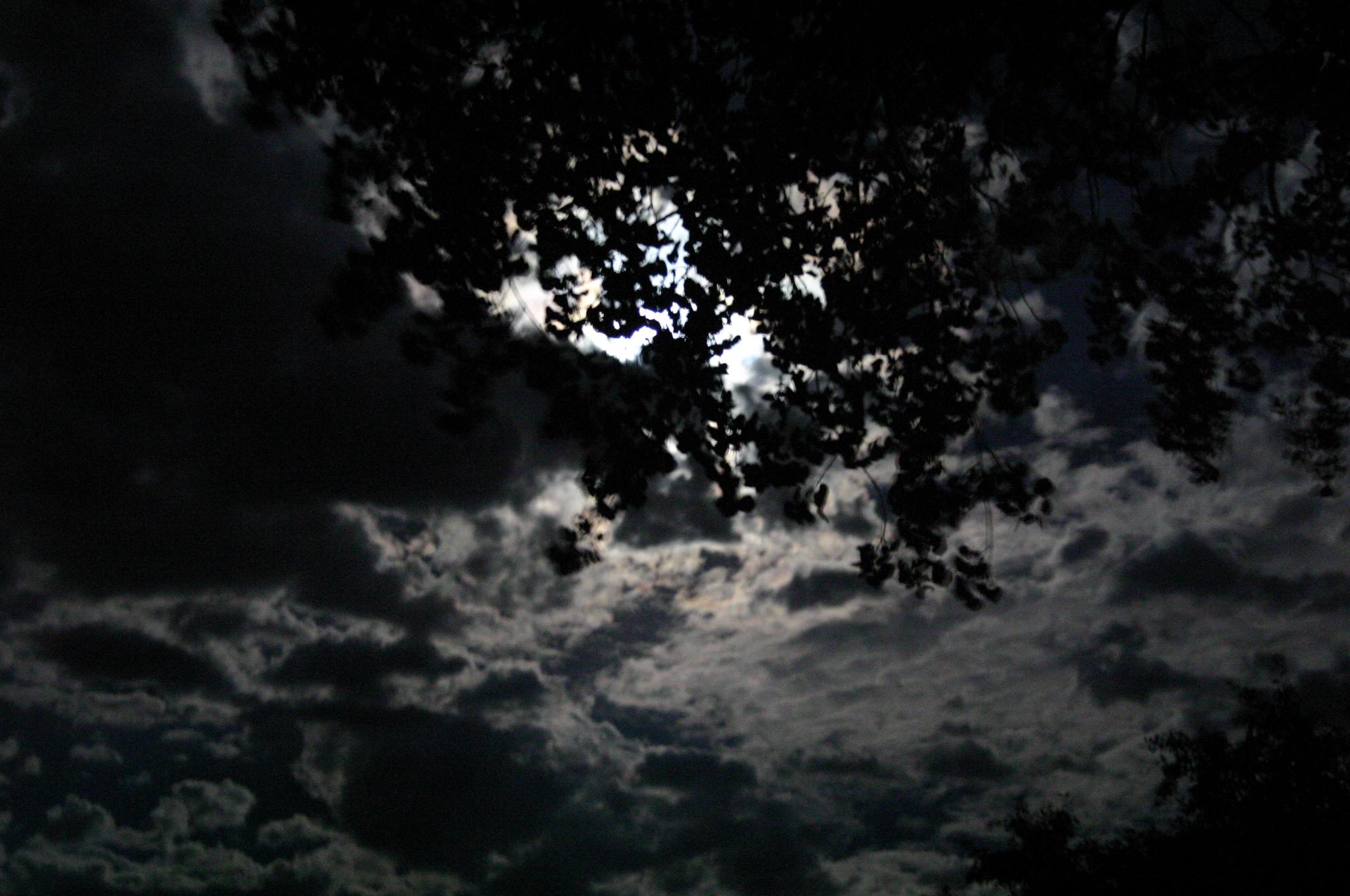 night sky wallpaper 11290