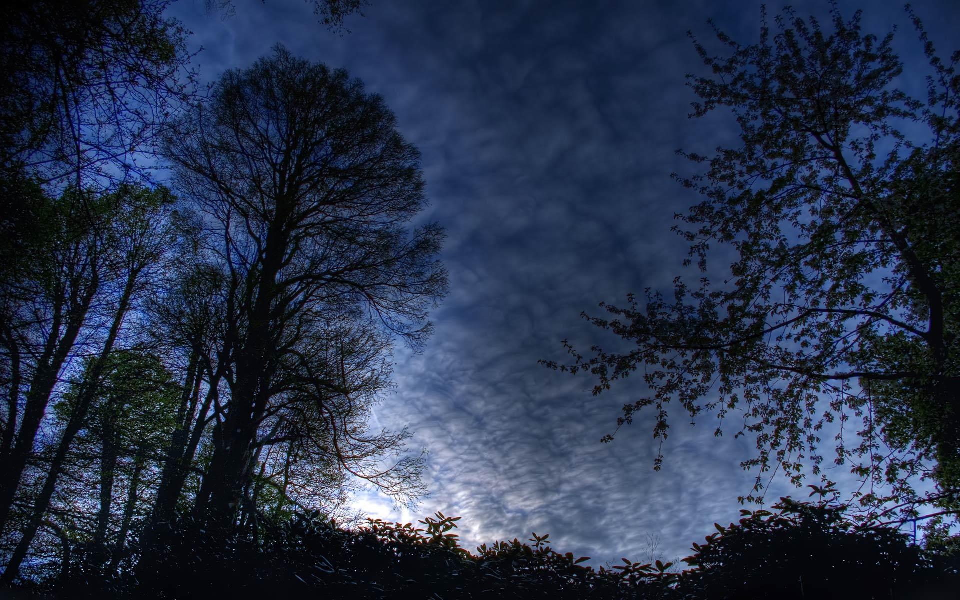 night sky wallpaper 11294