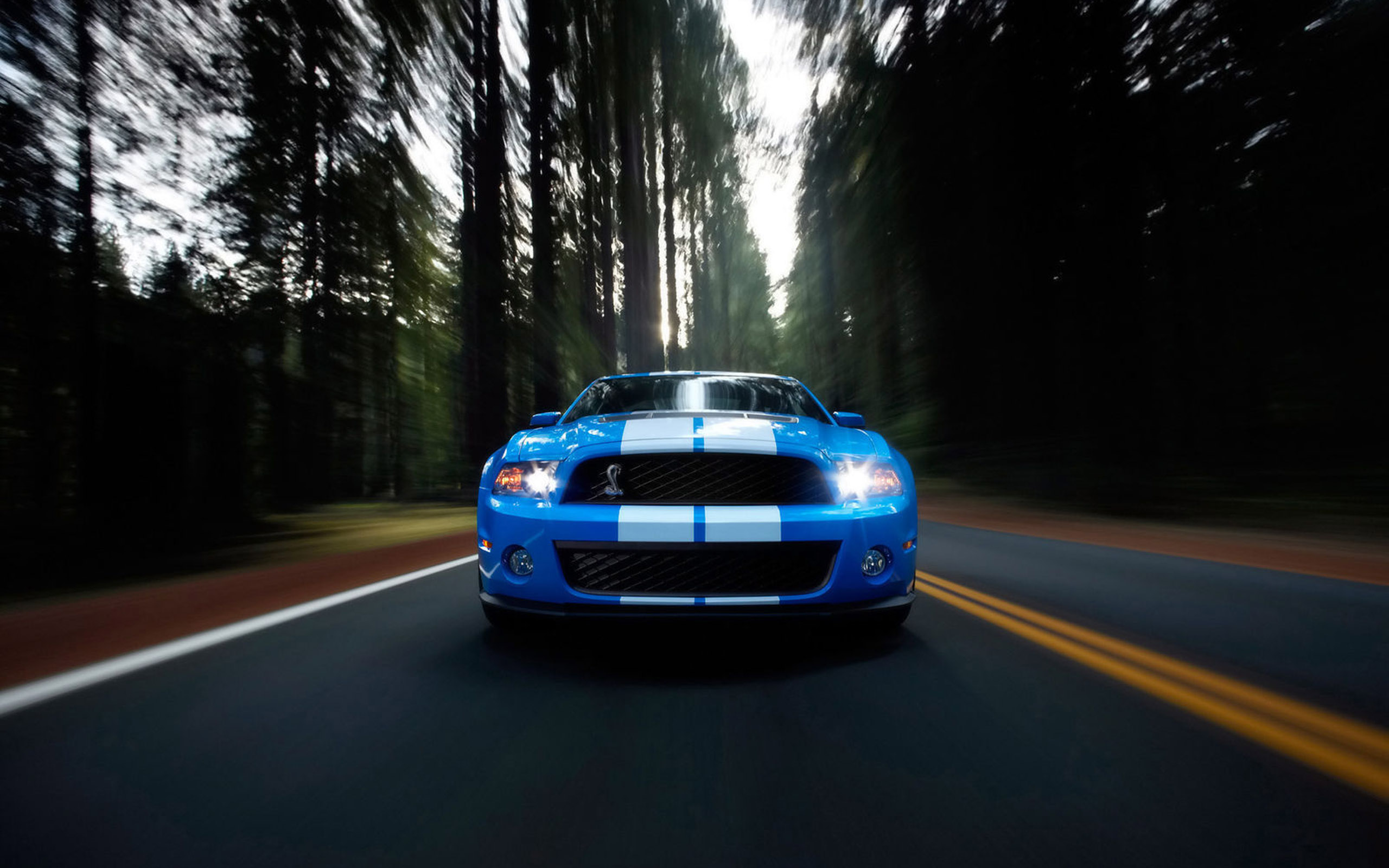 shelby gt500 30656