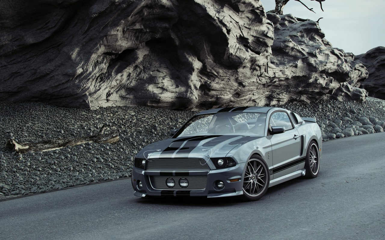 shelby gt500 pictures 30648