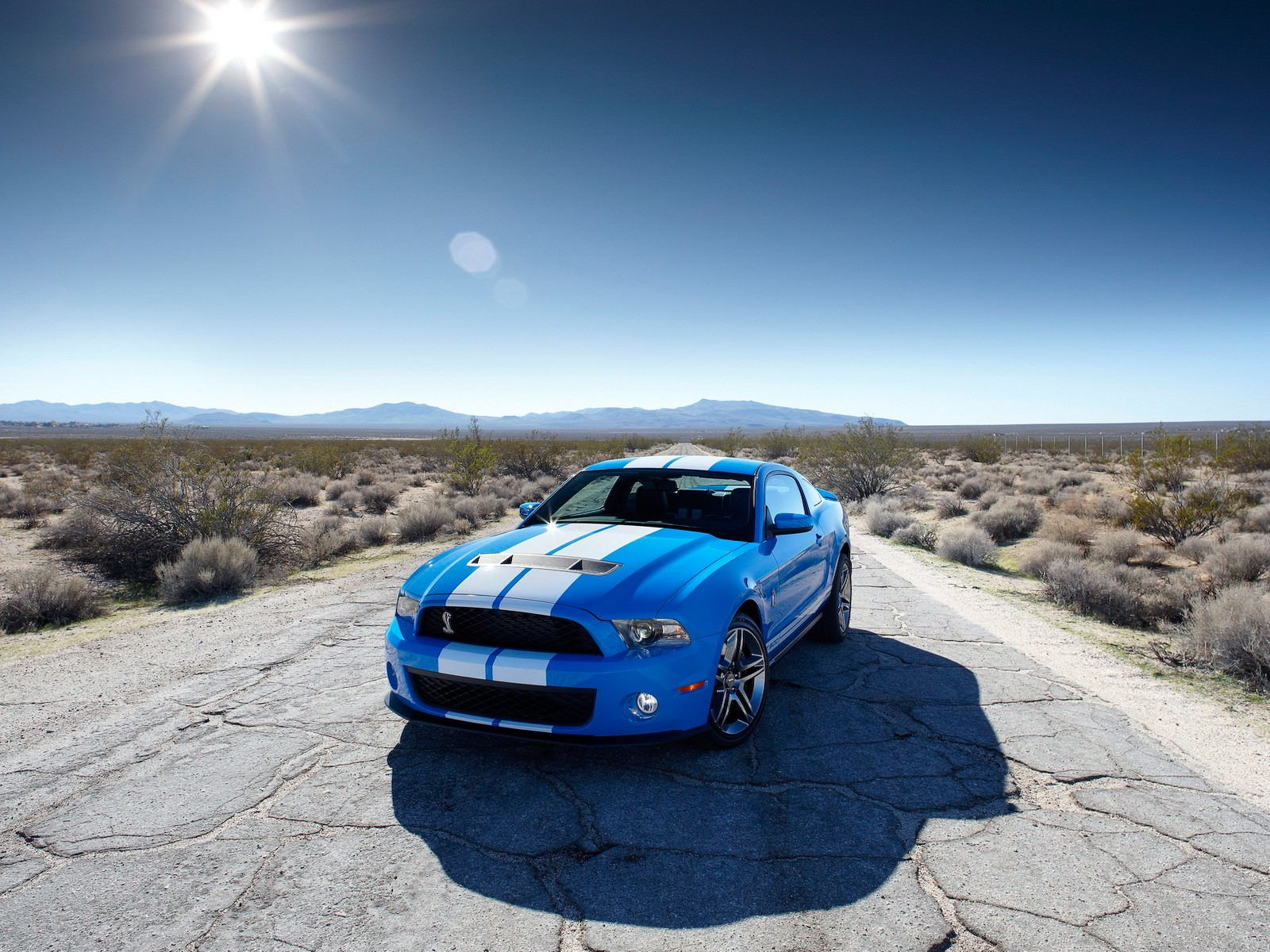 shelby gt500 pictures 30652