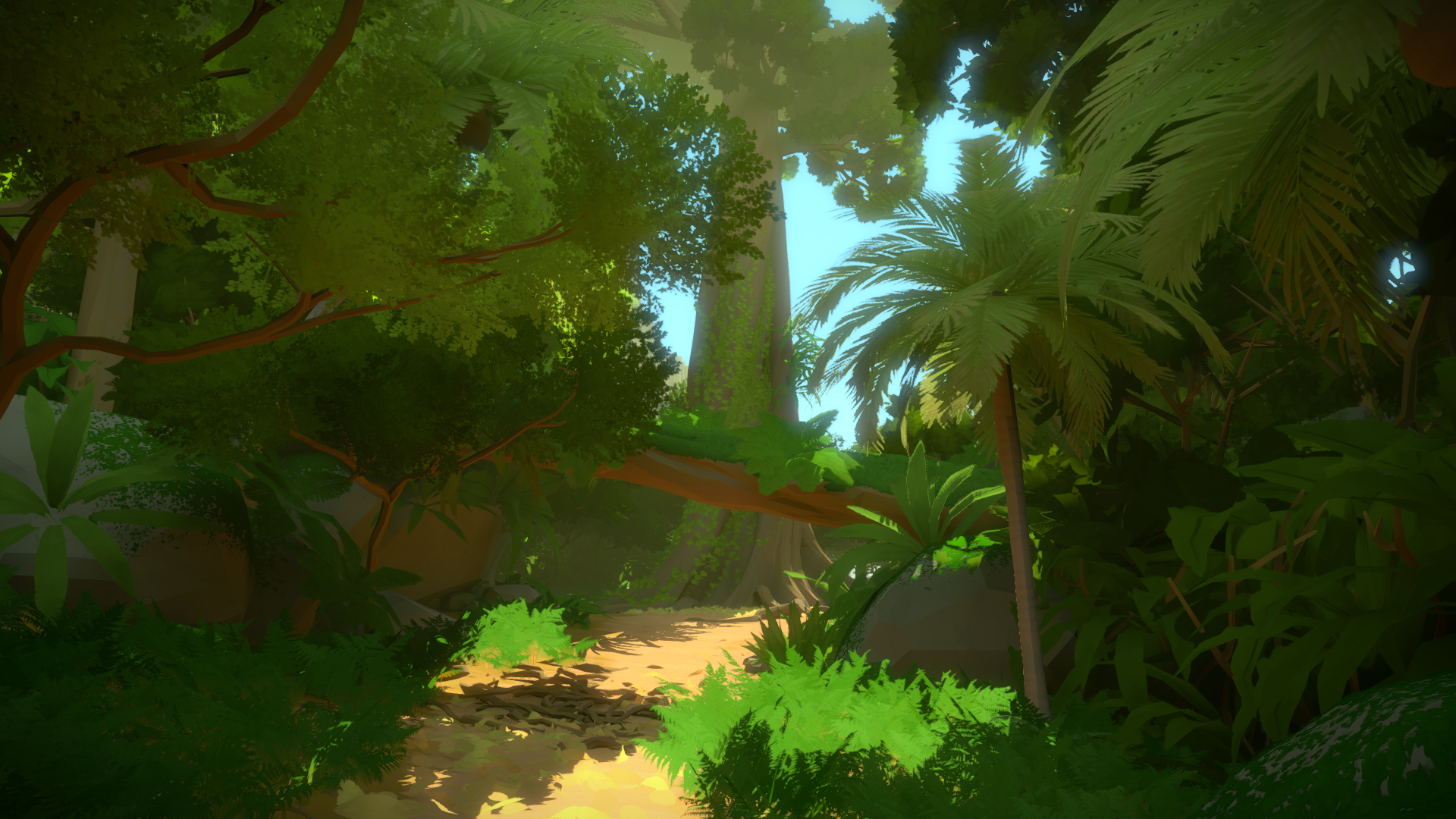 the witness wallpaper 44766