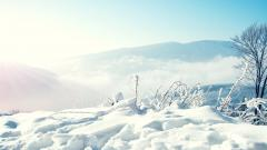Amazing Winter Mountain Wallpaper 29616