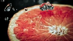 Awesome Grapefruit Wallpaper 38886