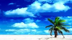 Beach Screensavers 21478