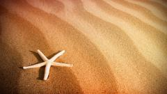Beautiful Beach Sand Wallpaper 22205