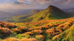 Beautiful Landscape 28237