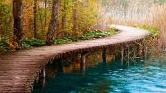 Beautiful Path Wallpaper 29641