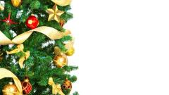 Christmas Tree Wallpaper 22868