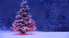 Christmas Wallpaper HD 8465