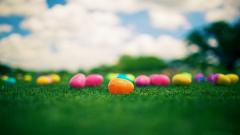 Colorful Easter Eggs 28240