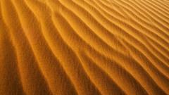 Desert Sand Wallpaper 22212