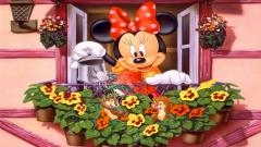Disney Wallpaper 13914