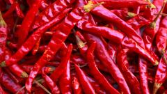 Dried Peppers Wallpaper 42710