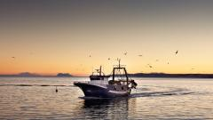 Fishing Boat Wallpaper 41865