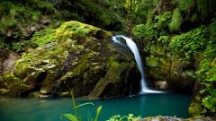 Forest Waterfall 34080