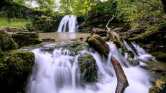 Forest Waterfall Wallpaper 34068