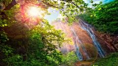 Forest Waterfall Wallpaper HD 34072
