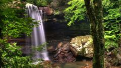 Forest Waterfall Wallpapers 34060