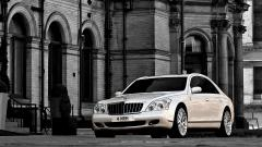 Free Maybach Wallpaper 37136