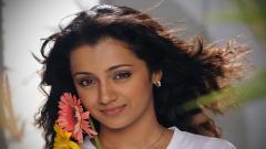 Free Trisha Krishnan Wallpaper 24862