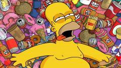 Funny Homer Simpson Wallpaper 22959