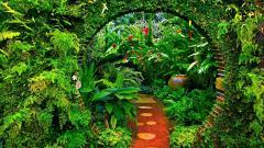 Garden 26313