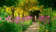 Garden Wallpapers 26308