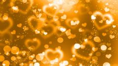 Gold Glitter Wallpaper 26006