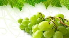 Grapes Wallpaper 20452