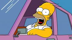 Homer Simpson HD 22971